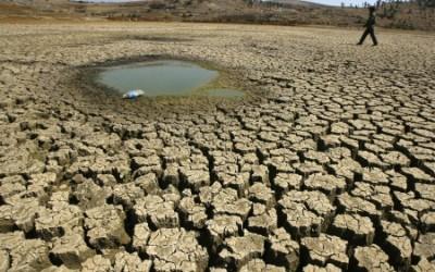 A Importância da água Curitiba